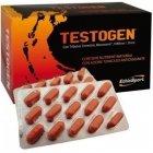 Тестоген (Testogen)