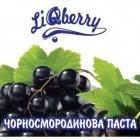Черносмородиновая пастаLIQberry